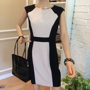 Maggy London black and white dress - 6